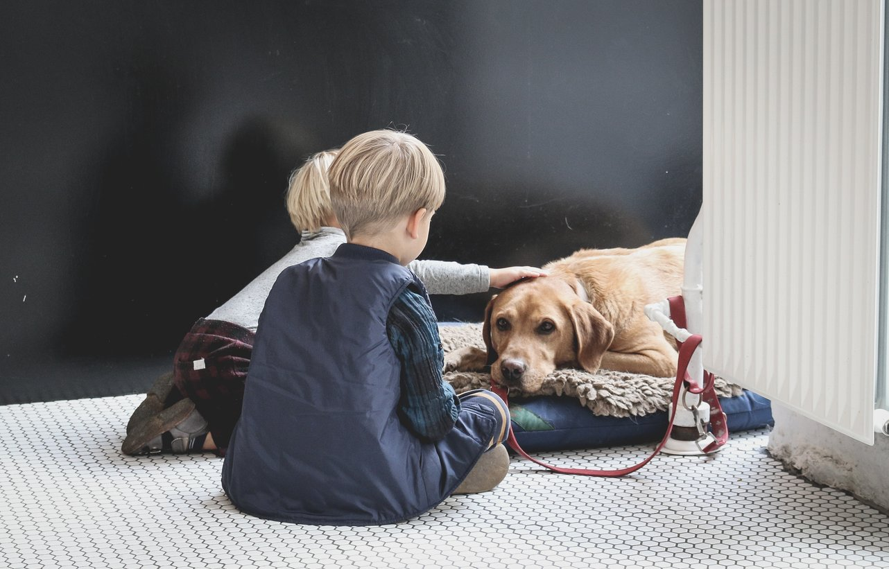 Best Flooring For Pets and Children
